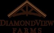 final-diamondview-logo